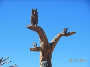 Birds in tree woman